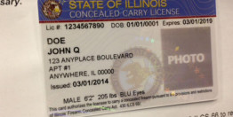 illinois+concealed+carry+permit
