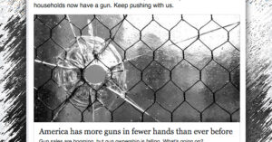 The Coalition To Stop Gun Violence Wants To Stop Guns All Together