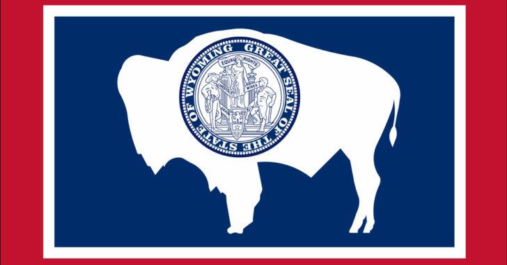 Wyoming Bill Would Ban Gun Buyback Programs