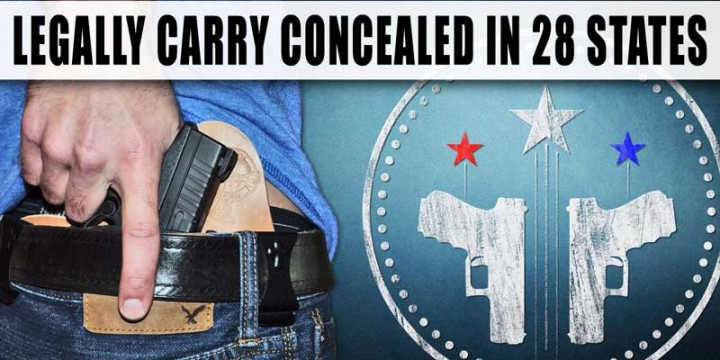 Virginia concealed carry
