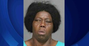 Should Have Been A DGU? Mentally Deranged Woman Attacks Victim With Butcher Knife Outside CVS