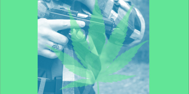 Marijuana and concealed carry