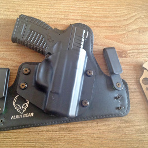 Handguns for Bear Defense: a Study by Caliber – Concealed Nation