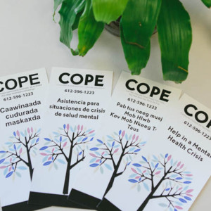 cope-brochures-storyinset