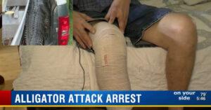 Man Arrested After Shooting Alligator Threatening His Livestock