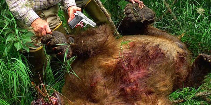 Bear 9mm alaska