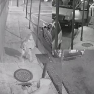 new-orleans-kidnapping-good-samaritan
