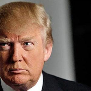 Donald trump second amendment issues