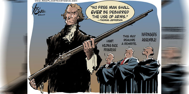 2nd amendment cartoon