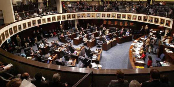 Florida senate debate