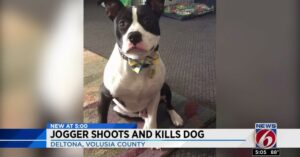 Jogger Shoots Dog After Being Chased, Owner Wants Justice