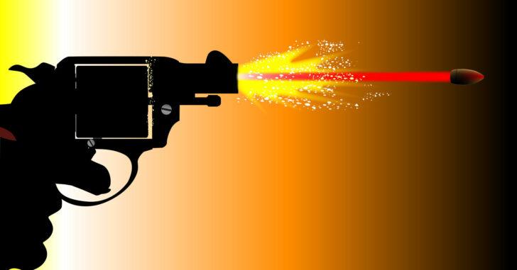 Is the Snub Enough Gun?