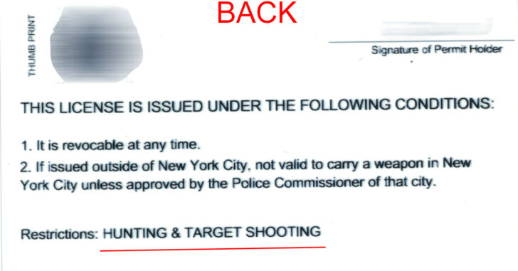Tales From New York: I Have A New Judge Who Wants To Talk With Me After I Filed An Amendment For My Pistol Permit