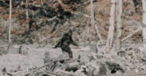 Montana Man Was Mistaken For Bigfoot And Shot At While He Was Target Shooting