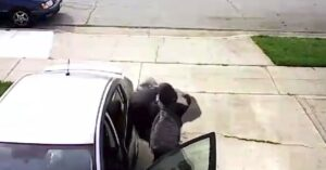 [VIDEO] Elderly Man Shown No Mercy By 14-Year-Old Carjacker Thug