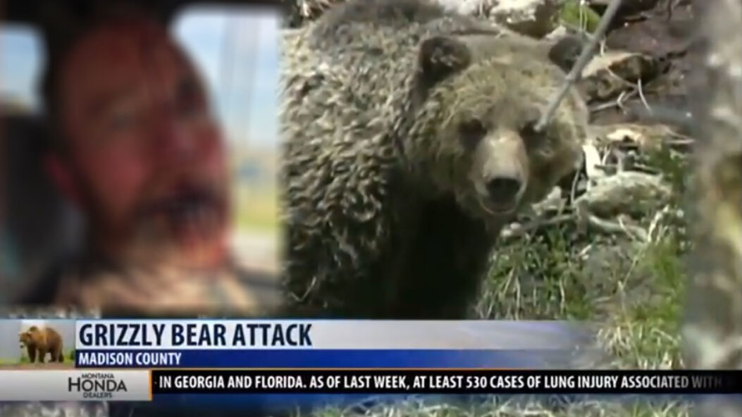 Hunter Survives Bear Attack; Shoots Grizzly In Self Defense