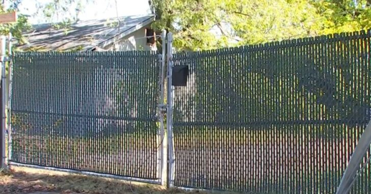 Property Owner Fatally Shoots Burglar