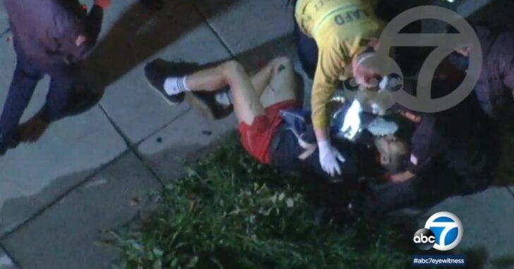 It Should Have Been A Defensive Gun Use: Lady Gaga's Dog Walker Shot, Dogs Stolen, Offers $500k Reward